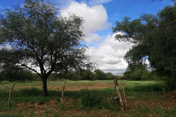 Foto de terreno habitacional en venta en camino a la herradura , el fuerte, santa maría del río, san luis potosí, 14696593 No. 01