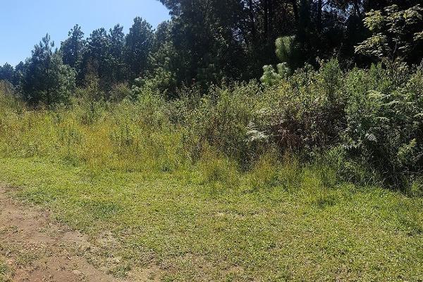 Foto de terreno habitacional en venta en camino a la peña , valle de bravo, valle de bravo, méxico, 5874291 No. 01