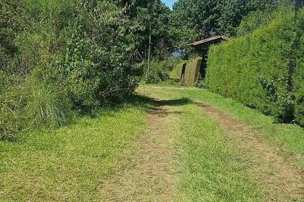 Foto de terreno habitacional en venta en camino a la peña , valle de bravo, valle de bravo, méxico, 5874291 No. 02