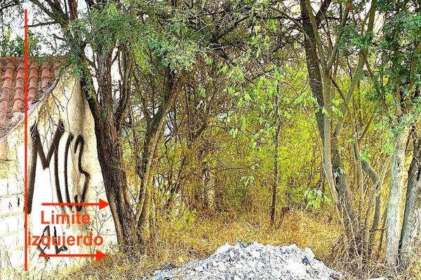 Foto de terreno habitacional en venta en camino a las espinas , san roque, juárez, nuevo león, 19809227 No. 13
