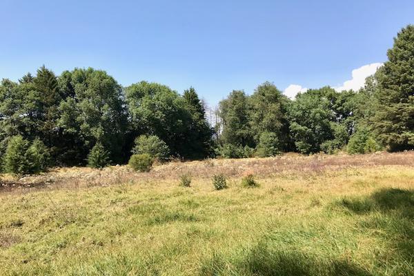 Foto de terreno habitacional en venta en camino a peña blanca s/n , peña blanca, valle de bravo, méxico, 0 No. 03