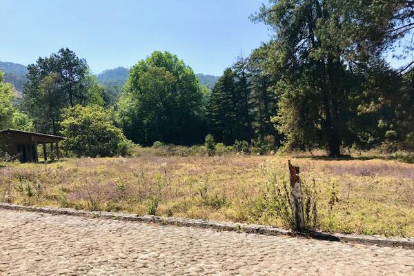 Foto de terreno habitacional en venta en camino a peña blanca s/n , peña blanca, valle de bravo, méxico, 0 No. 04