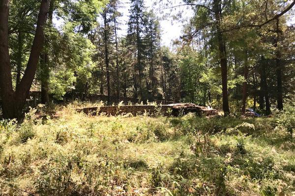 Foto de terreno habitacional en venta en camino a peña blanca s/n , peña blanca, valle de bravo, méxico, 0 No. 05