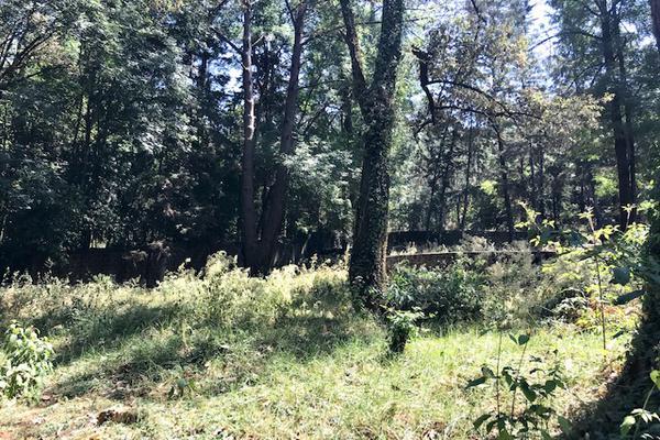 Foto de terreno habitacional en venta en camino a peña blanca s/n , peña blanca, valle de bravo, méxico, 0 No. 06
