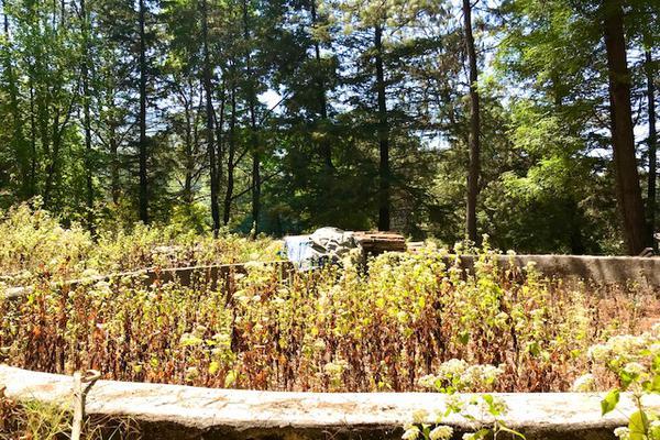 Foto de terreno habitacional en venta en camino a peña blanca s/n , peña blanca, valle de bravo, méxico, 0 No. 07