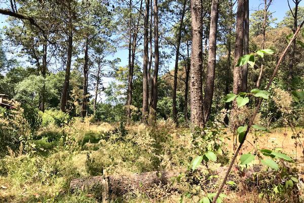 Foto de terreno habitacional en venta en camino a peña blanca s/n , peña blanca, valle de bravo, méxico, 0 No. 08