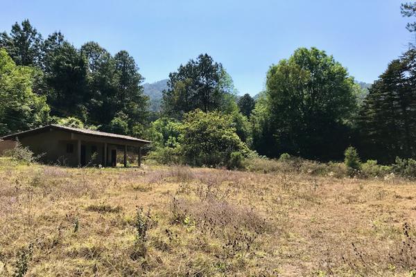 Foto de terreno habitacional en venta en camino a peña blanca s/n , peña blanca, valle de bravo, méxico, 0 No. 10