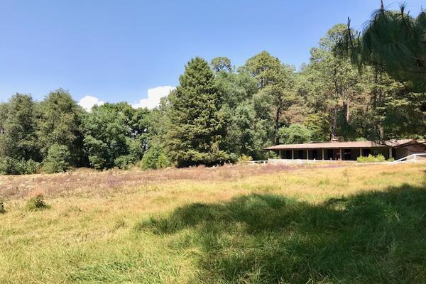 Foto de terreno habitacional en venta en camino a peña blanca s/n , peña blanca, valle de bravo, méxico, 0 No. 11