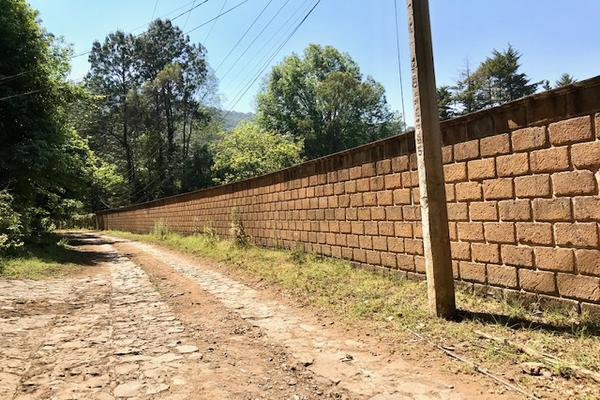 Foto de terreno habitacional en venta en camino a peña blanca s/n , peña blanca, valle de bravo, méxico, 0 No. 12