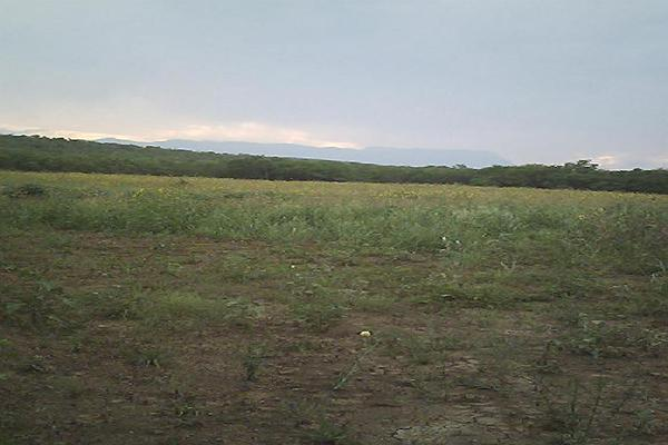 Foto de casa en venta en camino a rancher?a 1, loma alta, linares, nuevo león, 8877565 No. 02
