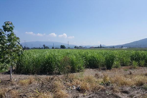 Foto de terreno comercial en venta en camino a san isidro mazatepec , santa cruz de la loma (tepetates), tlajomulco de zúñiga, jalisco, 15214190 No. 04