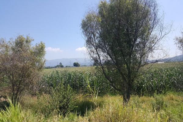 Foto de terreno comercial en venta en camino a san isidro mazatepec , santa cruz de la loma (tepetates), tlajomulco de zúñiga, jalisco, 15214190 No. 07