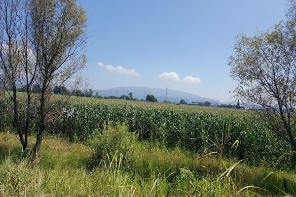 Foto de terreno comercial en venta en camino a san isidro mazatepec , santa cruz de la loma (tepetates), tlajomulco de zúñiga, jalisco, 15214190 No. 08