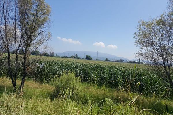 Foto de terreno comercial en venta en camino a san isidro mazatepec , santa cruz de la loma (tepetates), tlajomulco de zúñiga, jalisco, 15214190 No. 14