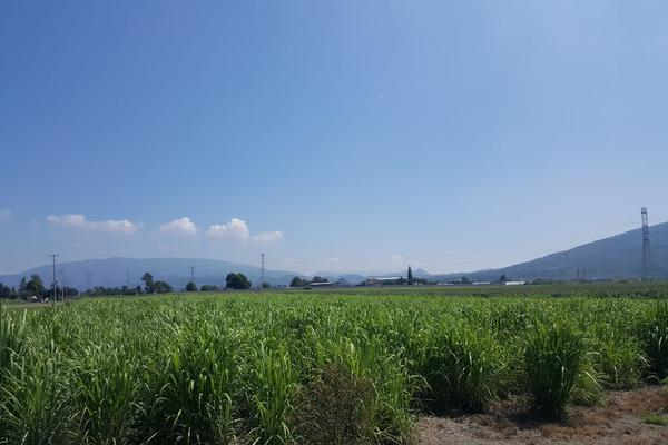 Foto de terreno comercial en venta en camino a san isidro mazatepec , santa cruz de la loma (tepetates), tlajomulco de zúñiga, jalisco, 15214190 No. 16