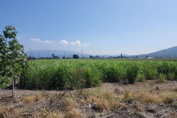 Foto de terreno comercial en venta en camino a san isidro mazatepec , santa cruz de la loma (tepetates), tlajomulco de zúñiga, jalisco, 15214190 No. 18