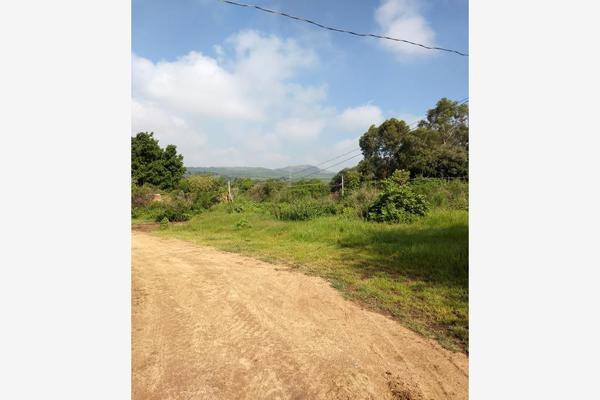 Foto de terreno habitacional en venta en camino a san miguel 112, el salto centro, el salto, jalisco, 9179266 No. 06
