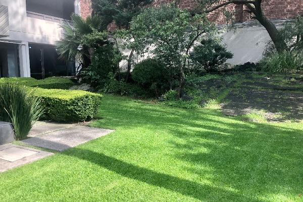Foto de departamento en venta en camino a santa teresa , jardines del pedregal, álvaro obregón, df / cdmx, 12843998 No. 35