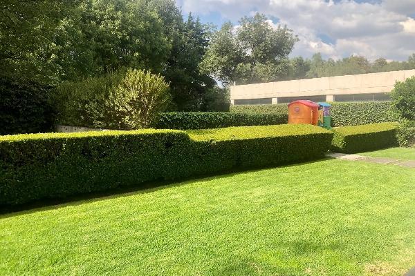 Foto de departamento en venta en camino a santa teresa , jardines del pedregal, álvaro obregón, df / cdmx, 12843998 No. 39