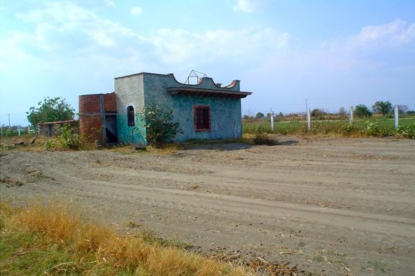 Foto de terreno industrial en venta en camino a tenextepec , tenextepec, atlixco, puebla, 19068190 No. 06