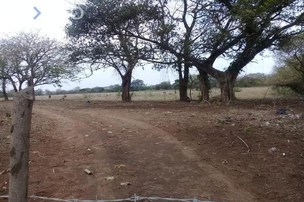 Foto de terreno habitacional en venta en camino al cedral , 2 lomas, veracruz, veracruz de ignacio de la llave, 0 No. 05