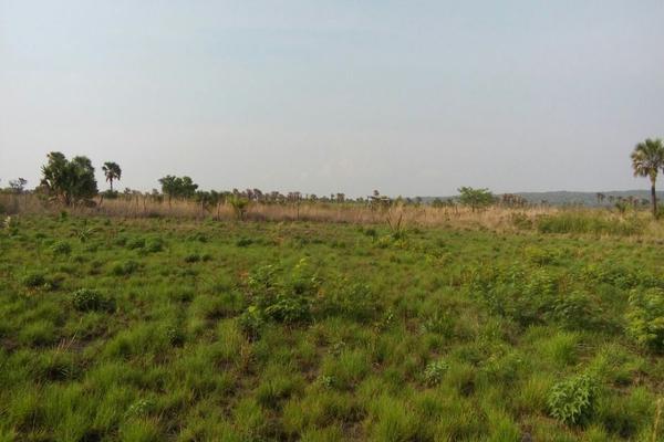 Foto de terreno habitacional en venta en camino al limon , tzimol, tzimol, chiapas, 8151778 No. 01