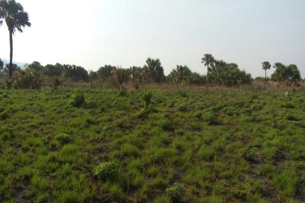 Foto de terreno habitacional en venta en camino al limon , tzimol, tzimol, chiapas, 8151778 No. 04