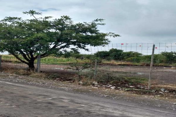 Foto de terreno habitacional en venta en camino al salitre, calle calma , los padilla, querétaro, querétaro, 6186158 No. 03