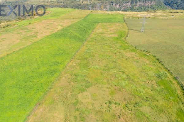 Foto de terreno industrial en venta en camino al vado , 20 de noviembre i, tonalá, jalisco, 5926926 No. 03