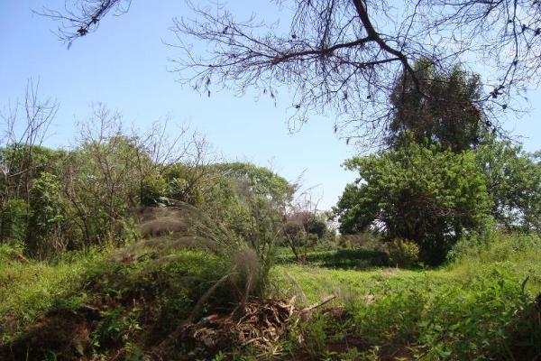 Foto de terreno habitacional en venta en camino alarcon 10, ahuatepec, cuernavaca, morelos, 5895243 No. 04