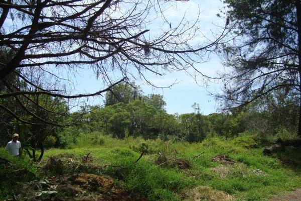 Foto de terreno habitacional en venta en camino alarcon 10, ahuatepec, cuernavaca, morelos, 5895243 No. 05