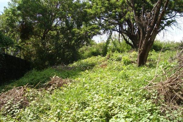 Foto de terreno habitacional en venta en camino alarcon 10, ahuatepec, cuernavaca, morelos, 5895243 No. 19