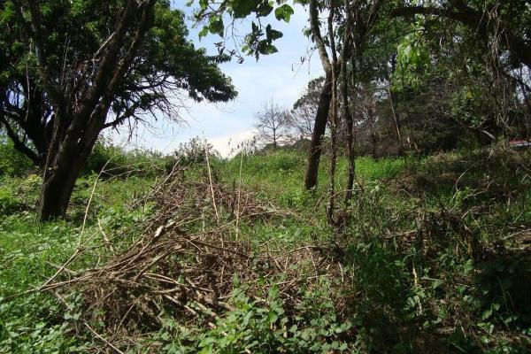 Foto de terreno habitacional en venta en camino alarcon 10, ahuatepec, cuernavaca, morelos, 5895243 No. 20