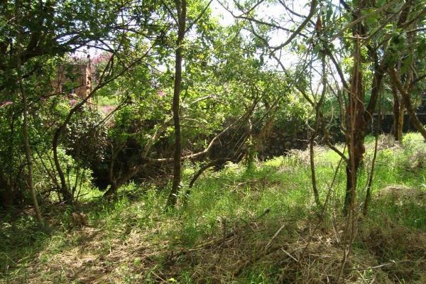 Foto de terreno habitacional en venta en camino alarcon 10, ahuatepec, cuernavaca, morelos, 5895243 No. 25