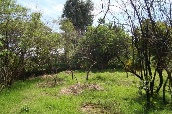 Foto de terreno habitacional en venta en camino alarcon 10, ahuatepec, cuernavaca, morelos, 5895243 No. 30