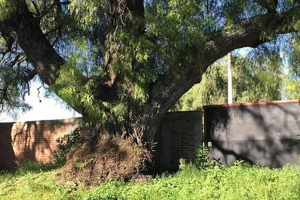 Foto de terreno industrial en venta en camino de las animas , tepotzotlán, tepotzotlán, méxico, 7224824 No. 01