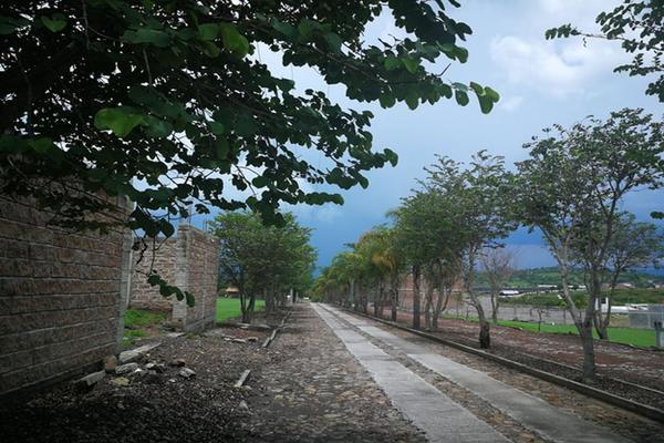 Foto de terreno habitacional en venta en camino de terraceria , el pescador, tangancícuaro, michoacán de ocampo, 19973668 No. 02