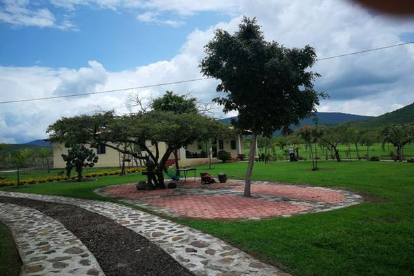 Foto de terreno habitacional en venta en camino de terraceria , el pescador, tangancícuaro, michoacán de ocampo, 19973668 No. 04