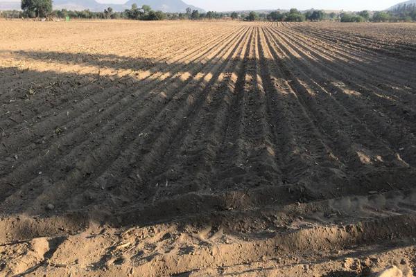Foto de terreno comercial en venta en camino del papachinal , santa maría nativitas, calimaya, méxico, 13303413 No. 01