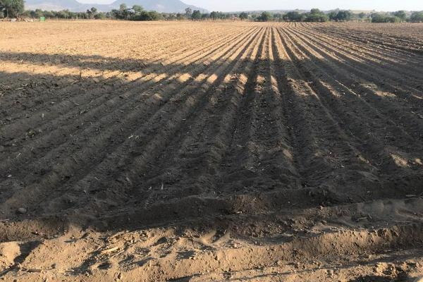 Foto de terreno comercial en venta en camino del papachinal , santa maría nativitas, calimaya, méxico, 13303413 No. 02