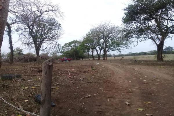 Foto de terreno habitacional en venta en camino dos lomas - el cedral 0, 2 lomas, veracruz, veracruz de ignacio de la llave, 0 No. 01