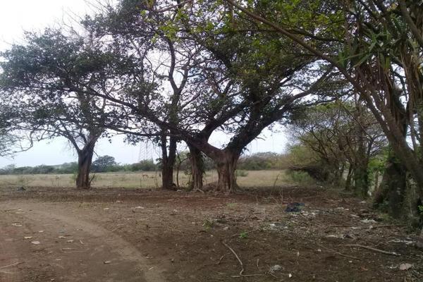 Foto de terreno habitacional en venta en camino dos lomas - el cedral 0, 2 lomas, veracruz, veracruz de ignacio de la llave, 0 No. 03