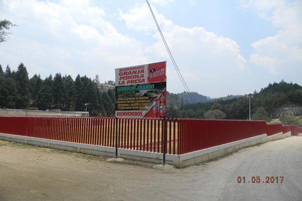 Foto de terreno habitacional en venta en camino loma de la papa , transfiguración, nicolás romero, méxico, 5856286 No. 03