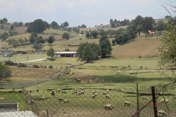 Foto de terreno habitacional en venta en camino loma de la papa , transfiguración, nicolás romero, méxico, 5856286 No. 07