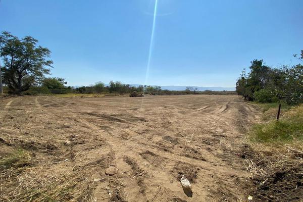 Foto de terreno comercial en renta en camino real , santa cruz xoxocotlan, santa cruz xoxocotlán, oaxaca, 13342234 No. 03