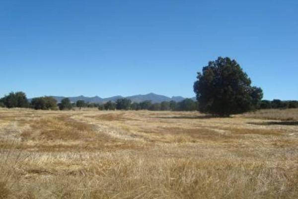 Rancho en Camino Rural A La Presa Atlang..., Tlaxco, en