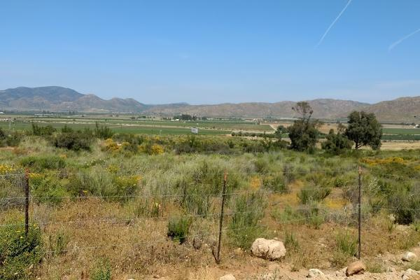 Foto de terreno habitacional en venta en camino vecinal , el porvenir, ensenada, baja california, 3460194 No. 03