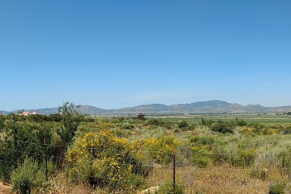 Foto de terreno habitacional en venta en camino vecinal , el porvenir, ensenada, baja california, 3460194 No. 06