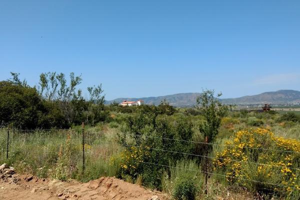 Foto de terreno habitacional en venta en camino vecinal , el porvenir, ensenada, baja california, 3460194 No. 02