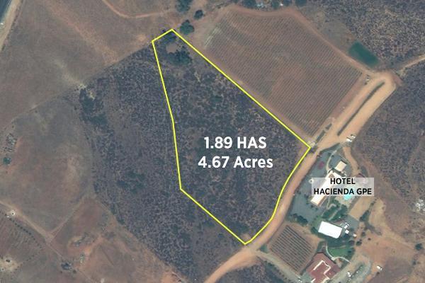 Foto de terreno habitacional en venta en camino vecinal , el porvenir, ensenada, baja california, 3460194 No. 11